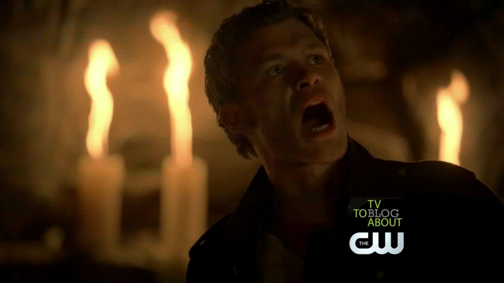 dqgW8 1024x576 The Vampire Diaries   3x12: The Ties That Bind