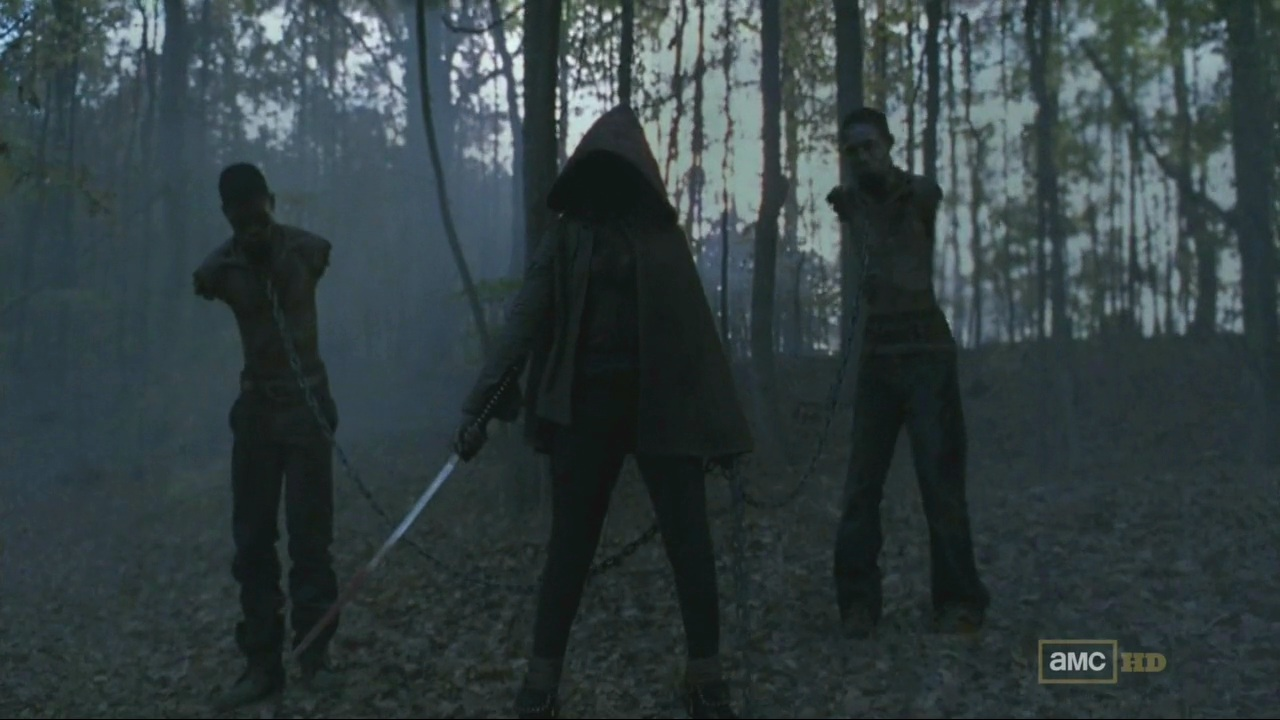 The-Walking-Dead-S02E13.Dehparadox.1.jpg